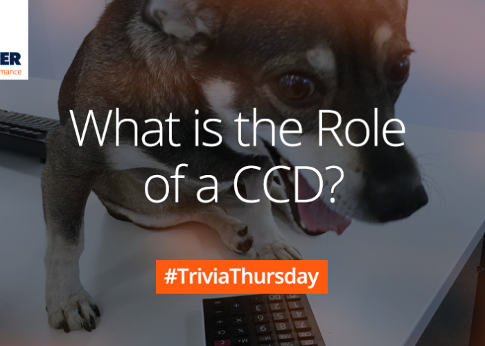 Trivia Thursday Dog CCD Mobile Marketing